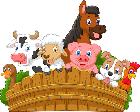 isolated animal: Collection farm animals cartoon Illustration