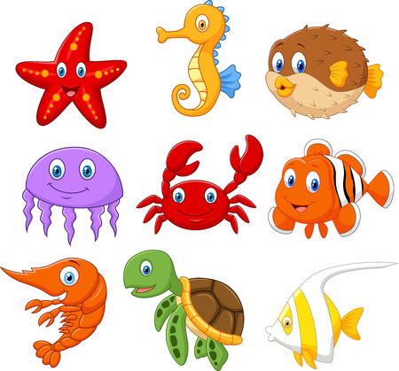 Cartoon fish collection set 矢量图像