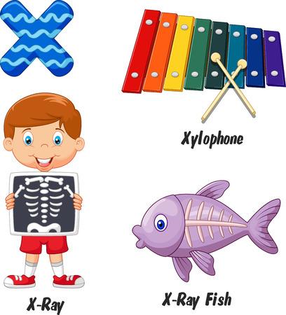 alfabeto con animales: X de dibujos animados alfabeto