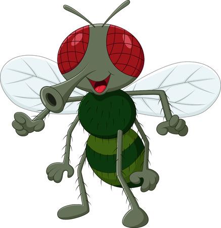 mosca caricatura: Animales mosca linda de la historieta Vectores