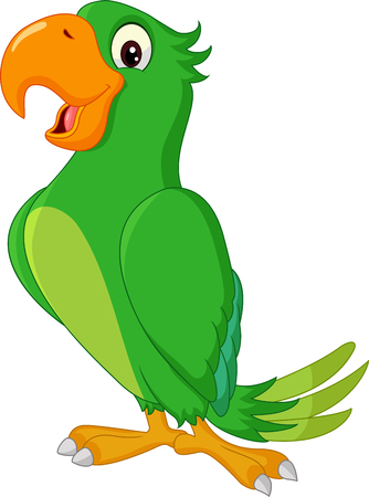 cartoon parrot: Cartoon cute parrot isolated on white background Illustration
