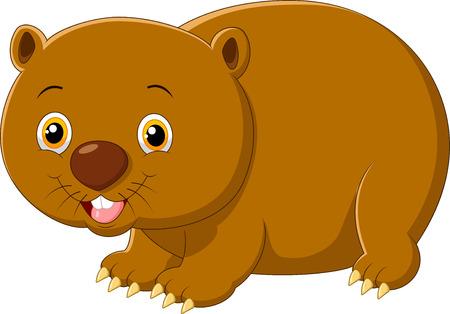 wombat: Wombat de dibujos animados aislado en el fondo blanco