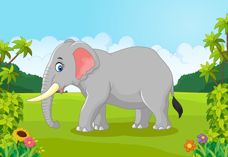animal eye: Cartoon animal elephant