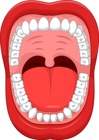 tooth cartoon: Parts of Human mouth. Open mouth and white healthy teeths. with explaining. Illustration