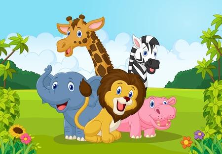 Recogida de animales de áfrica