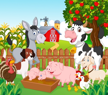 cartoon mascot: Collection animal in the farm