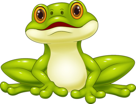 tropical frog: Cartoon cute frog Illustration