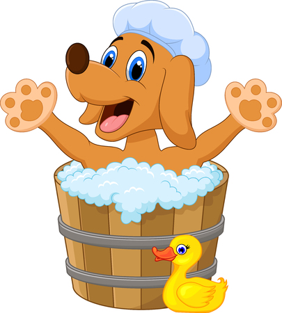 grooming: Cartoon Dog bathing waving hand