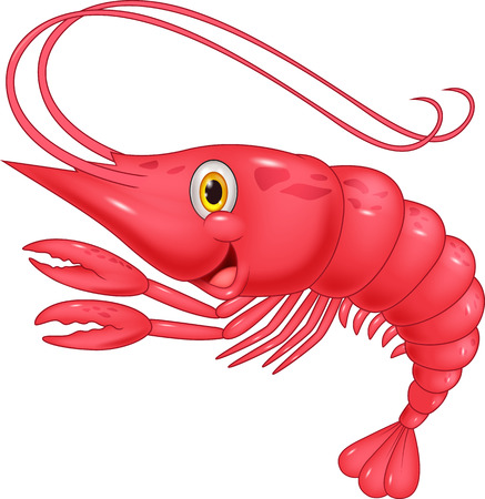 cartoon dinner: Cute shrimp cartoon illustration Illustration