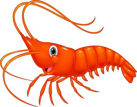 Roztomilý kreslený krevety