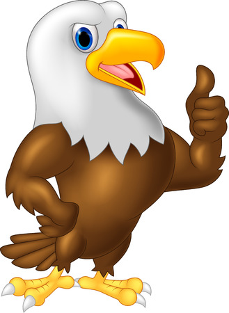 eagle: Strong and powerful eagle giving thumb up