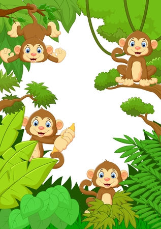 Collection monkey silly face in the forest