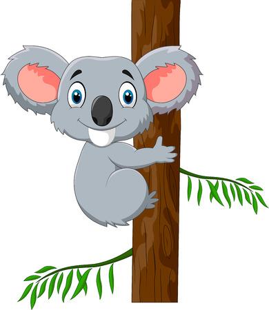 koala bear: Cute koala holding tree