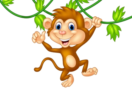 show plant: Cute monkey hanging giving thumb up