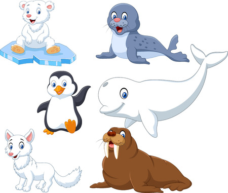 Vector illustration of Arctics animals collection set on white background Illustration