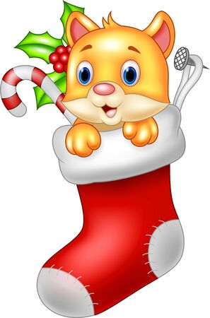 sock: illustration of Cute cartoon cat in the Santa Claus sock