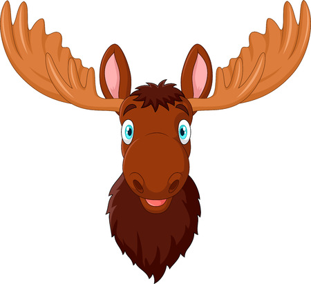 moose antlers: illustration of Cartoon moose head isolated on white background