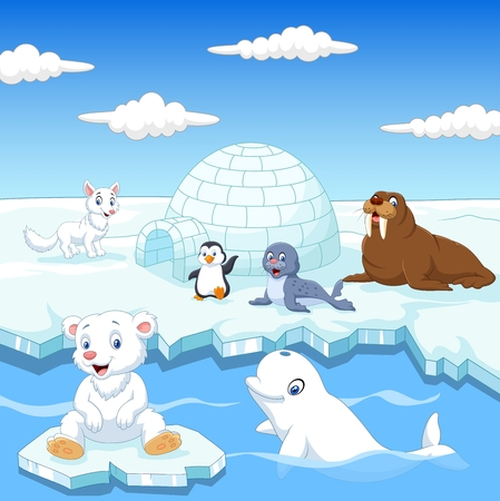 Penguins: illustration of Arctics animals collection set with igloo ice house