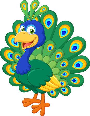 pavo real: ilustraci�n de hermoso pavo real de la historieta aislado en el fondo blanco