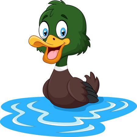 水に浮くをアヒルの漫画のイラスト  イラスト・ベクター素材