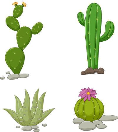 flor caricatura: Ilustración de la colección de la ilustración de cactus en el fondo blanco Vectores