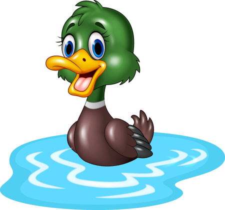 Vector illustration of Cartoon duck floats on water