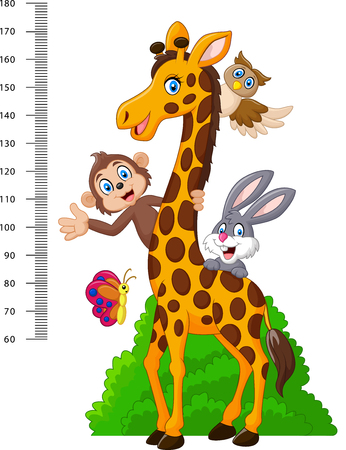 height: Vector illustration of Kids height scale with funny animals