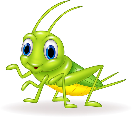 Vector illustration of Cartoon cute green cricket isolated on white background Çizim