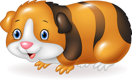 Vector illustration of Cartoon Guinea pig isolated on white background