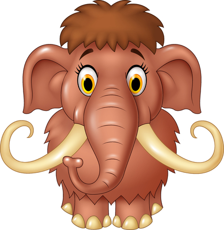 mammoth: Vector illustration of Cartoon cute mammoth isolated on white background Illustration