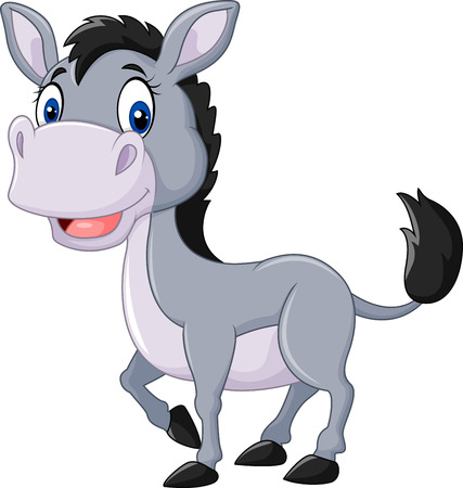 ass fun: Vector illustration of Cute baby donkey posing isolated on white background