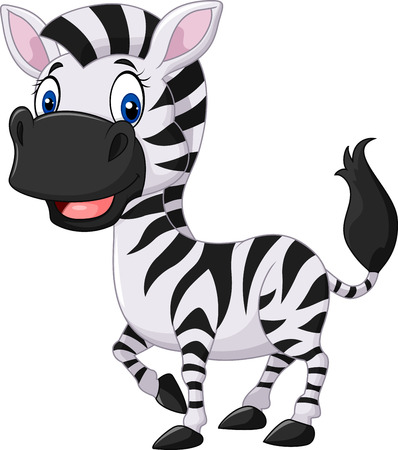 smiling faces: Vector illustration of Cute baby zebra posing isolated on white background