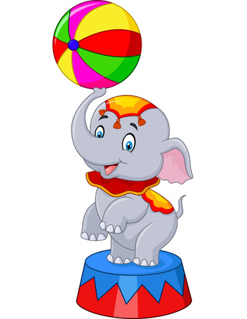 circus stage: Vector illustration of Circus elephant with a striped ball stands on a podium isolated on white background Illustration