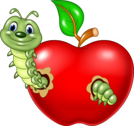 gusano caricatura: Ilustraci�n vectorial de las orugas de dibujos animados comer la manzana roja sobre fondo blanco
