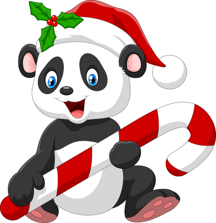 panda: Vector illustration of Cartoon funny baby bear holding Christmas candy