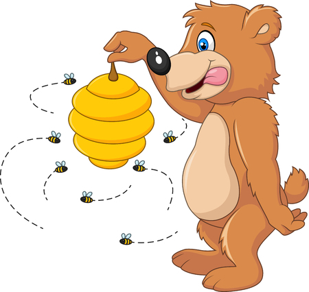 bee hive: Vector illustration of Cute bear holding Bee hive on white background Illustration