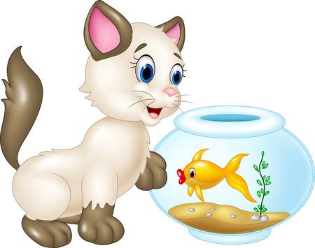 Vector animals: Vector hình minh họa của mèo Curious chơi với cá bơi bị cô lập trên nền trắng