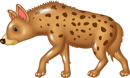 baby illustration: Vector illustration of Cartoon hyena walking isolated on white background Illustration