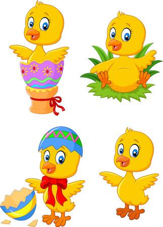 pollo: Ilustración vectorial de pollo lindo del bebé divertido con el conjunto de la colección de huevos de Pascua Vectores