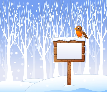 robin bird: Vector illustration of Cartoon robin bird on the blank sign with winter background