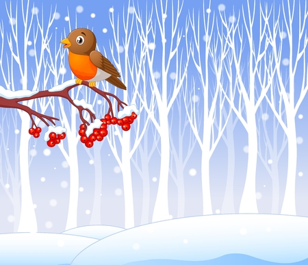 Vector illustration of Cartoon funny robin bird on the berry tree with winter background