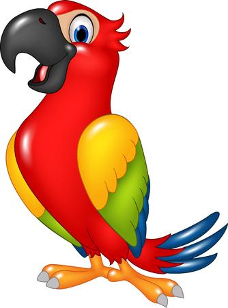 Vektorové ilustrace Cartoon legrační papoušek na bílém pozadí