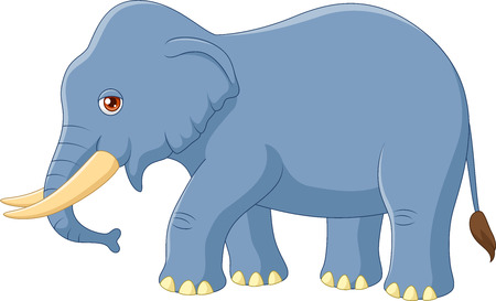 elephant trunk: Vector illustration of Cartoon elephant mascot isolated on white background Illustration