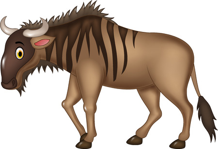 of antelope: Vector illustration of Cartoon adorable wildebeest isolated on white background