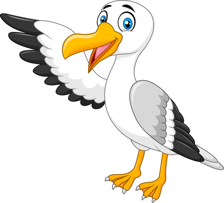 Vector illustration of Cartoon seagul presenting. Isolated on white background