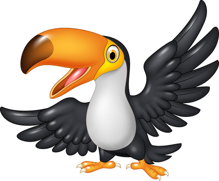 cartoon parrot: Vector illustration of funny cartoon toucan. Isolated on white background