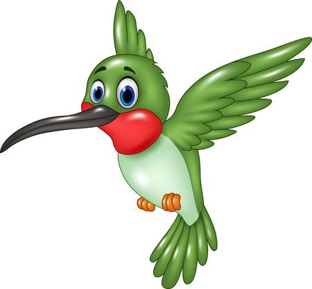 bandada pajaros: Ilustración del vector del colibrí divertidos dibujos animados volando aisladas sobre fondo blanco