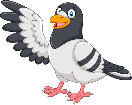 white tail: Vector illustration of Cute Pigeon bird presenting. Isolated on white background