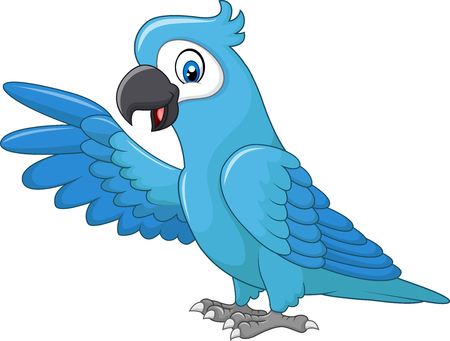 cute animal cartoon: Vector illustration of Cartoon funny blue macaw presenting isolated on white background