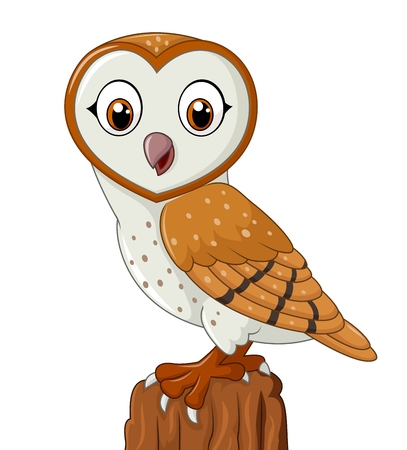 barns: Vector illustration of Cartoon barn owl isolated on white background